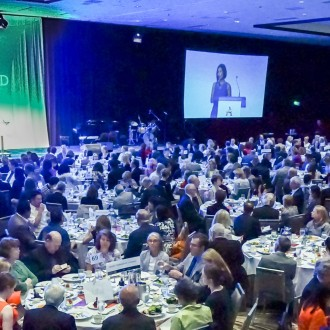 Twenty-Eighth Annual Celebration of the Arts Luncheon